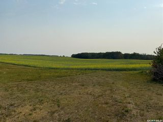 Photo 32: Zerr Farm in Big Quill: Farm for sale (Big Quill Rm No. 308)  : MLS®# SK864365