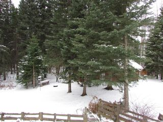 Photo 36: 20 Alder Green Close Other SE: Rural Clearwater County Detached for sale : MLS®# A1049287