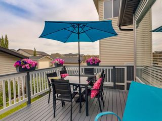 Photo 44: 180 SILVERADO Way SW in Calgary: Silverado Detached for sale : MLS®# A1016012