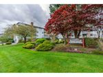 """Main Photo: 106 5379 205 Street in Langley: Langley City Condo for sale in """"Heritage Manor"""" : MLS®# R2571223"""