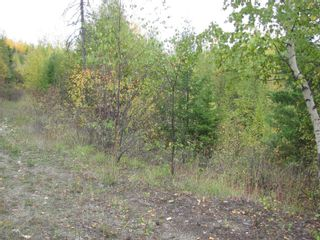 Photo 25: 80 Acres Creighton Valley Road, in Lumby: Vacant Land for sale : MLS®# 10239894