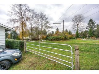 Photo 19: 14124 113A AVENUE in Surrey: Bolivar Heights House for sale (North Surrey)  : MLS®# R2222522