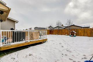 Photo 48: 69 SILVERADO Boulevard SW in Calgary: Silverado Detached for sale : MLS®# A1072031