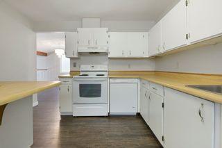Photo 19: 4314 38 Street in Edmonton: Zone 29 House for sale : MLS®# E4225194
