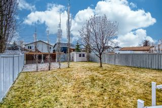 Photo 2: 176 Creek Gardens Close NW: Airdrie Detached for sale : MLS®# A1048124