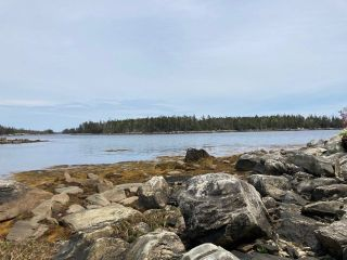 Photo 4: Lot Mushaboom Road in Mushaboom: 35-Halifax County East Vacant Land for sale (Halifax-Dartmouth)  : MLS®# 202114485