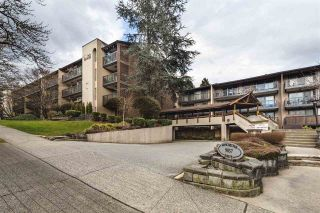 Photo 9: 316 9857 MANCHESTER DRIVE in Burnaby: Cariboo Condo for sale (Burnaby North)  : MLS®# R2445859