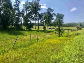 Photo 4: Hwy 780 Twp Rd 470: Rural Wetaskiwin County Rural Land/Vacant Lot for sale : MLS®# E4235412