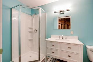 Photo 13: 84 Silver Creek Boulevard NW: Airdrie Detached for sale : MLS®# A1125089