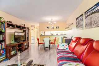 Photo 13: 104 526 THIRTEENTH Street in New Westminster: Uptown NW Condo for sale : MLS®# R2369645