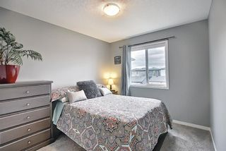 Photo 27: 139 Howse Lane NE in Calgary: Livingston Detached for sale : MLS®# A1118949