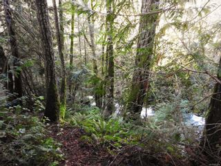 Photo 14: 2211 Ayum Rd in : Sk Saseenos House for sale (Sooke)  : MLS®# 862269