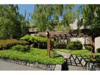 Photo 10: 308 1366 Hillside Ave in VICTORIA: Vi Oaklands Condo for sale (Victoria)  : MLS®# 504943
