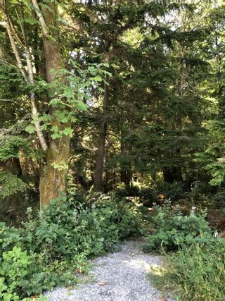 """Photo 19: 206 3600 WINDCREST Drive in North Vancouver: Roche Point Condo for sale in """"WNDSONG AT RAVEN WOODS"""" : MLS®# R2573504"""