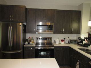 Photo 6: 17467 77 Street in Edmonton: Zone 28 House for sale : MLS®# E4257447