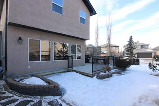 Photo 34: 81 Royal Road NW in Calgary: Royal Oak Detached for sale : MLS®# A1077619
