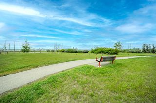 Photo 34: 212 3212 Valleyview Park SE in Calgary: Dover Apartment for sale : MLS®# A1116209
