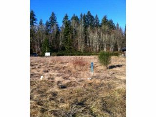 """Photo 3: 31559 KENNEY Avenue in Mission: Mission BC Land for sale in """"SPORTS PARK/GOLF COURSE"""" : MLS®# F1429433"""