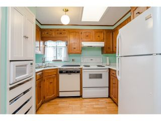"""Photo 29: 3 4426 232 Street in Langley: Salmon River Manufactured Home for sale in """"WESTFIELD COURT"""" : MLS®# R2479123"""