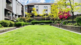 Photo 3: 4 385 GINGER DRIVE in New Westminster: Fraserview NW Condo for sale : MLS®# R2464824