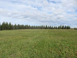 Photo 15: 0 Centreline Road: RM Springfield Vacant Land for sale (R04)  : MLS®# 202103923