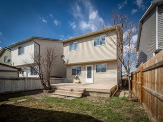 Photo 25: 124 Martinbrook Road NE in Calgary: Martindale Detached for sale : MLS®# A1100901