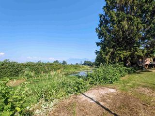 Photo 14: 46553 MONTANA Drive in Chilliwack: Fairfield Island House for sale : MLS®# R2597658