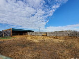 Photo 45: Saccucci Farm in Rosthern: Farm for sale (Rosthern Rm No. 403)  : MLS®# SK856093