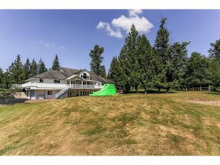Photo 19: 21980 100TH Avenue in Langley: Fort Langley House for sale : MLS®# F1448299