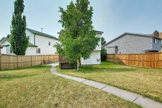Photo 42: 94 Erin Meadow Close SE in Calgary: Erin Woods Detached for sale : MLS®# A1135362