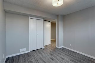 Photo 31: 3812 49 Street NE in Calgary: Whitehorn Detached for sale : MLS®# A1054455