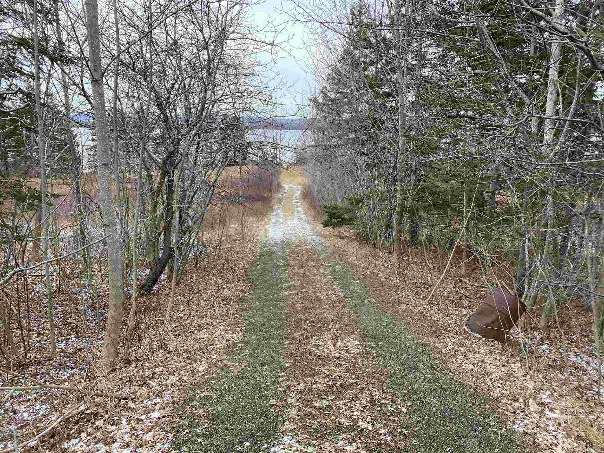 Photo 7: Photos: 8080 Marble Mountain Road in Malagawatch: 306-Inverness County / Inverness & Area Vacant Land for sale (Highland Region)  : MLS®# 202101037