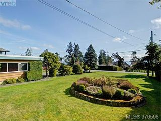Photo 16: 5276 Parker Ave in VICTORIA: SE Cordova Bay House for sale (Saanich East)  : MLS®# 756067
