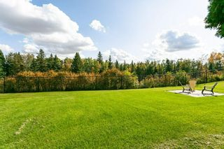 Photo 29: 3441 199 Street in Edmonton: Zone 57 House for sale : MLS®# E4247933