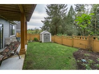 "Photo 19: 11053 BUCKERFIELD Drive in Maple Ridge: Cottonwood MR House for sale in ""WYNNRIDGE"" : MLS®# R2192580"