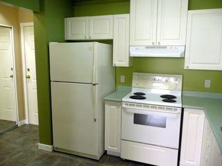 Photo 8: #113-12769 72nd Avenue in Surrey: Condo for sale