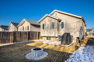 Photo 33: 123 Redonda Street in Winnipeg: Canterbury Park Residential for sale (3M)  : MLS®# 202107335