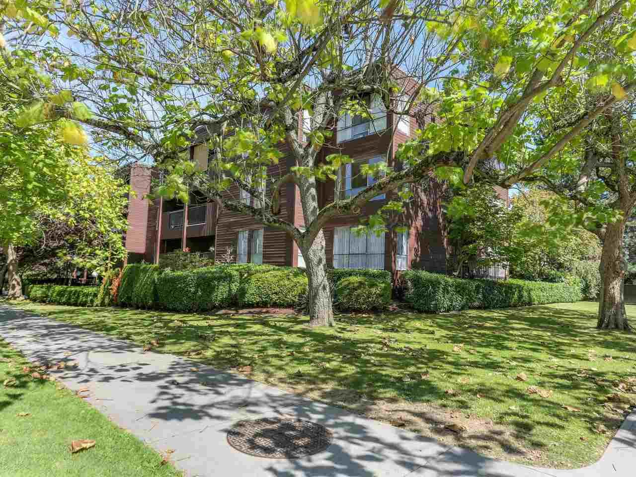 Main Photo: 407 2920 ASH STREET in : Fairview VW Condo for sale : MLS®# R2104823