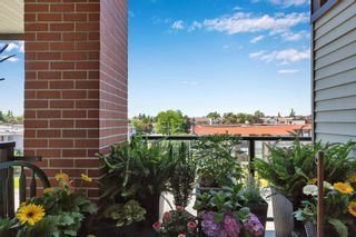 """Photo 21: 433 5660 201A Street in Langley: Langley City Condo for sale in """"Paddington Station"""" : MLS®# R2596042"""