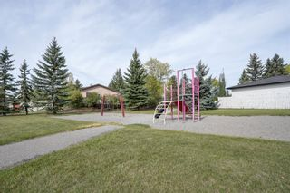 Photo 41: 3307 39 Street SE in Calgary: Dover Detached for sale : MLS®# A1148179