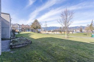 Photo 34: 105 45875 CHEAM Avenue in Chilliwack: Chilliwack W Young-Well Townhouse for sale : MLS®# R2548383