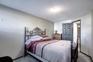 Photo 25: 2500 Sagewood Crescent SW: Airdrie Detached for sale : MLS®# A1152142