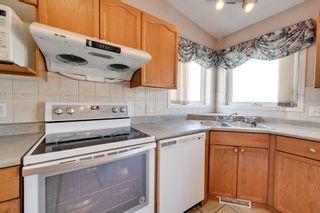 Photo 20: 13636 128 Avenue in Edmonton: Zone 01 House for sale : MLS®# E4266364
