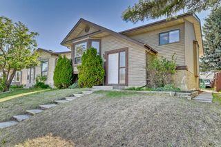 Photo 23: 19 Falshire Close NE in Calgary: Falconridge Detached for sale : MLS®# A1121159