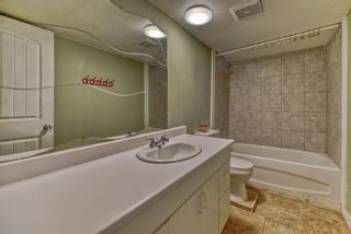 Photo 24: 262 Martinwood Place NE in Calgary: Martindale Detached for sale : MLS®# A1123392