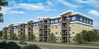 Photo 3: 313 1505 Molson Street in Winnipeg: Oakwood Estates Condominium for sale (3H)  : MLS®# 202121264