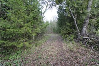 Photo 12: 1/4 2700 Block Squilax Anglemont Road in Lee Creek: North Shuswap Land Only for sale (Shuswap)  : MLS®# 10138544