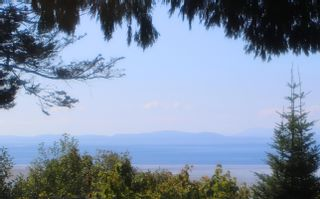"""Photo 9: 987 PACIFIC Drive in Delta: English Bluff House for sale in """"THE VILLAGE"""" (Tsawwassen)  : MLS®# R2615607"""