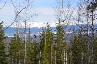 Photo 5: 2842 Ptarmigan Road | Private Paradise Smithers