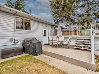 Photo 31: 1116 24 Street NW in Calgary: West Hillhurst Detached for sale : MLS®# A1093237
